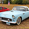 FORD THUNDERBIRD (1)_GF