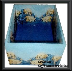 caisse chiots bleus