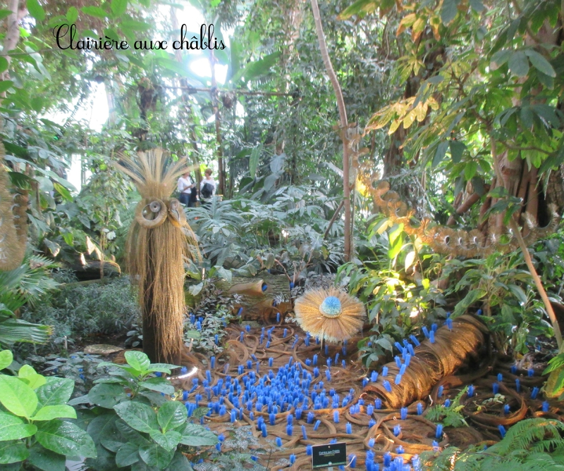 Serre Jardin des Plantes