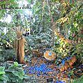 Alexis tricoire aux serres - jardin des plantes