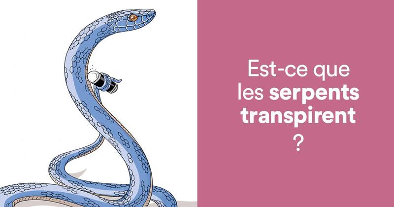 serpent transpire