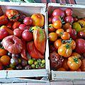 1er juillet - je déclare ouverte la saison des tomates rôties...c'est parti