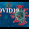 - covid-19-84, les origines ? virus