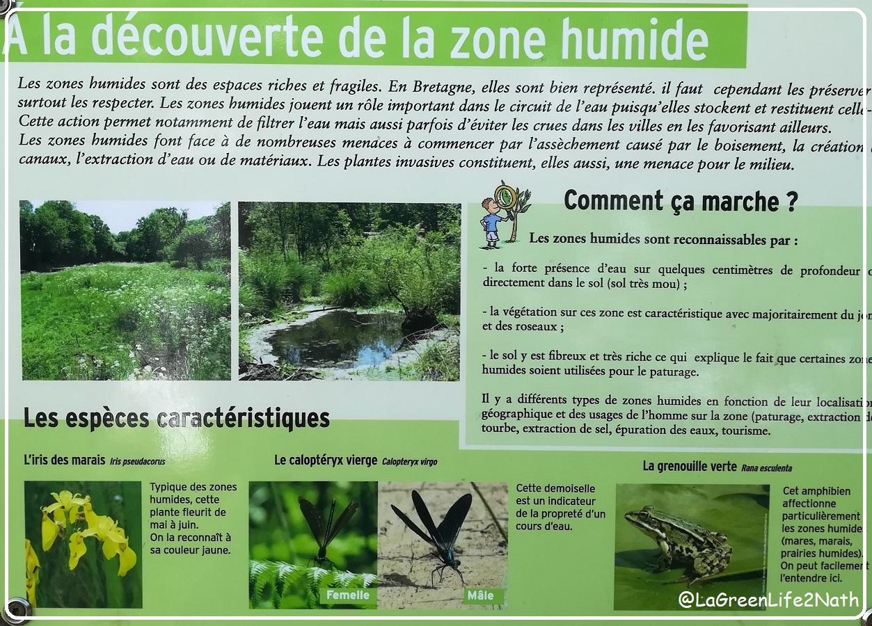Branféré, Parc Animalier Et Tourisme Durable En Morbihan