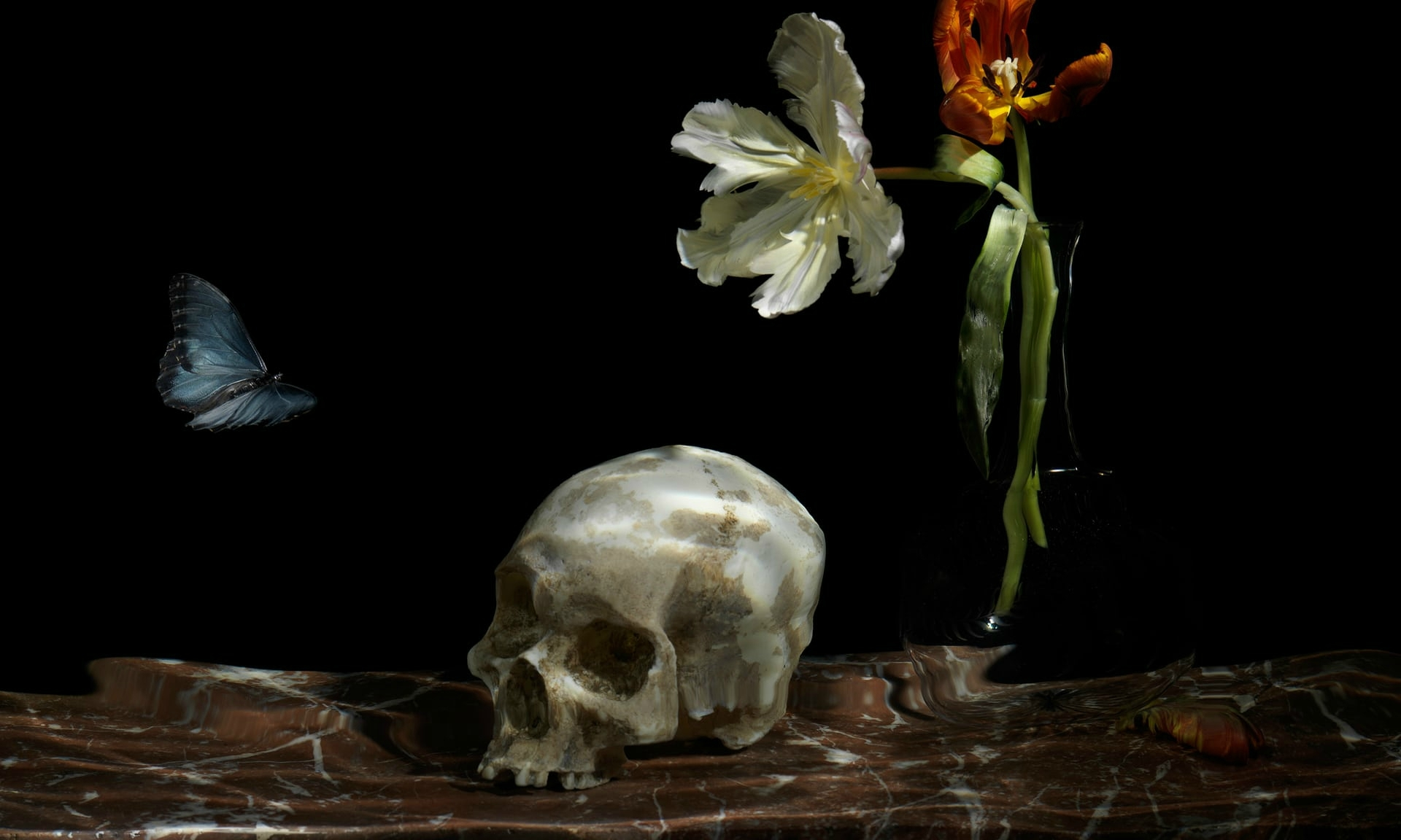 Alexander James's still life The Great Leveller (2010), from the Nature Morte exhibition at the Guildhall Art Gallery, London