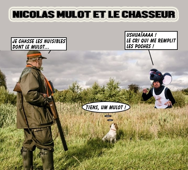 chasseur-hulot-bulles