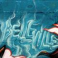 Dénoyez Belleville_3030